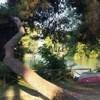 Pescara si riprende la pineta vsitata e curata