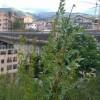 """Viadotto """"Belvedere"""" pericolante sulle case,   perchè non è stato demolito in nove anni?"""